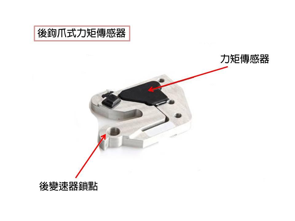 Rear drop out torque sensor